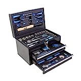 Karcher Werkzeugkasten - 117-teiliges Werkzeugset aus Chrom Vanadium &...